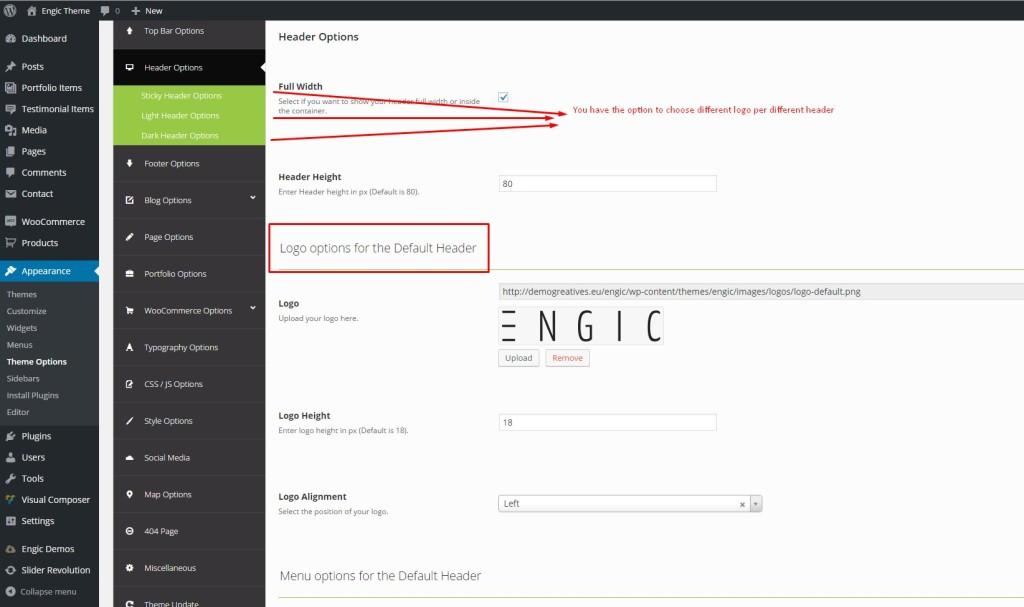 engic_logo options