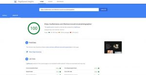 Crocal on Google PageSpeed